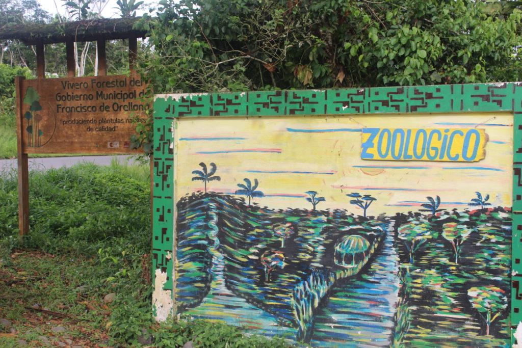 Zoológico Municipal ubicado a nueve kilómetros de Coca, en la vía Auca. Allí acogen a animales silvestres que son recuperados vivos en operativos contra el tráfico de especies. Foto: Daniela Aguilar