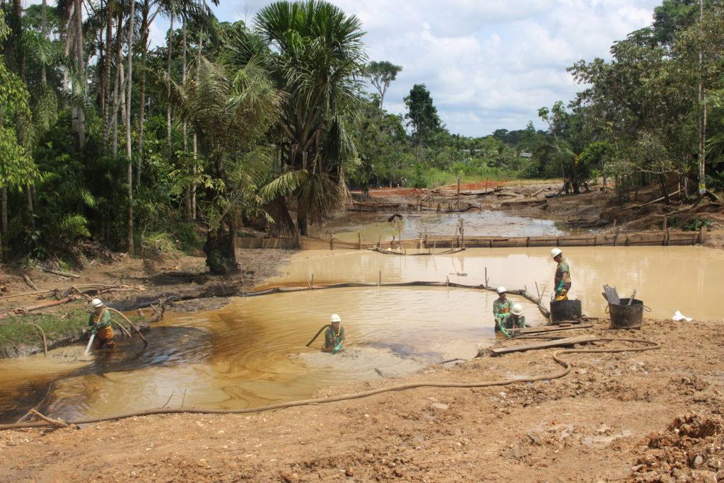 Panorámica de trabajos de remediación que realiza Amazonía Viva en comunidad Juan Montalvo. Foto: Daniela Aguilar